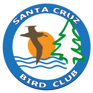 Santa Cruz Bird Club